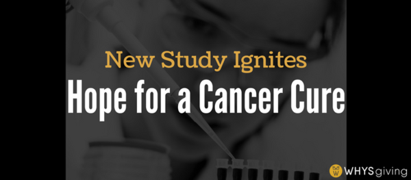 New Study Ignites Hope for a Cancer Cure